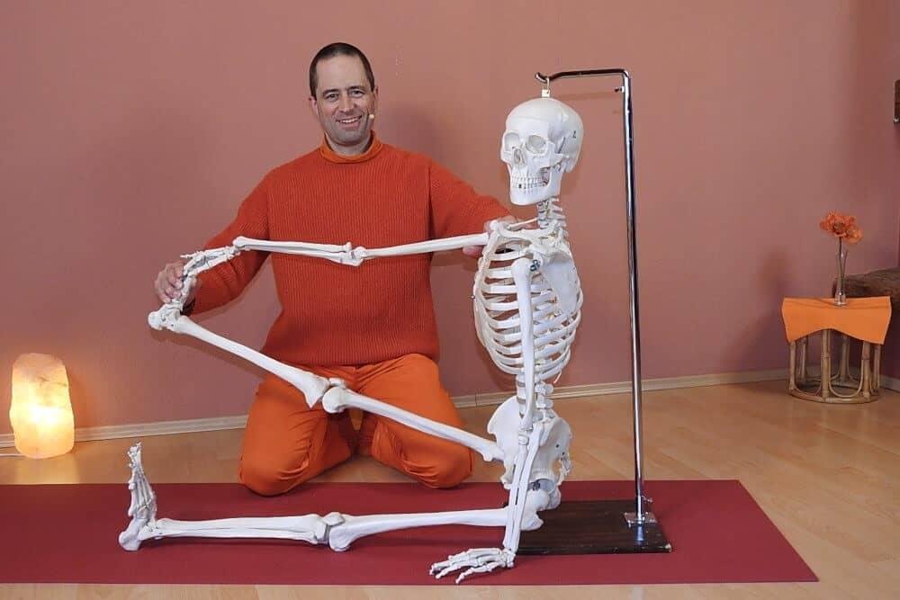 Live Onlinekurs: Praktische Yoga-Anatomie - Zwei Asanas verstehen